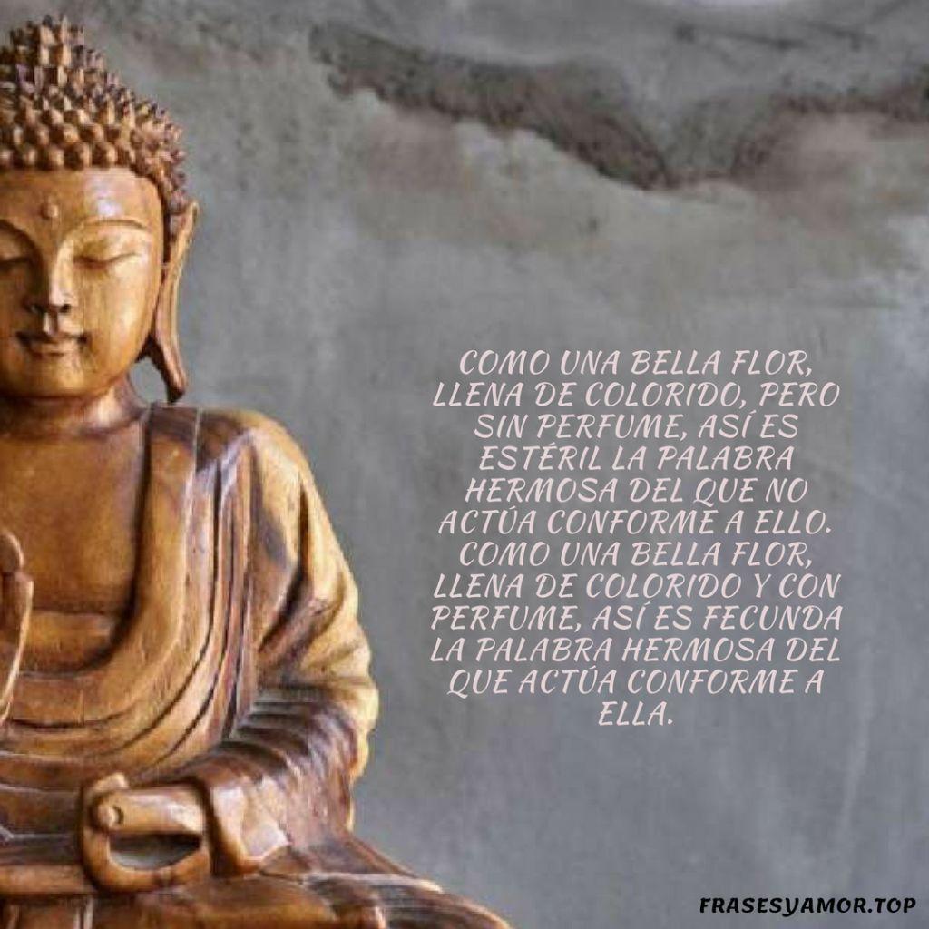 Frases del karma de la vida